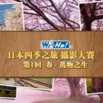 Wi-Ho!日本四季之旅攝影大賽-第一回春。萬物之生