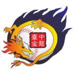 2017年金龍盃全國青棒菁英賽