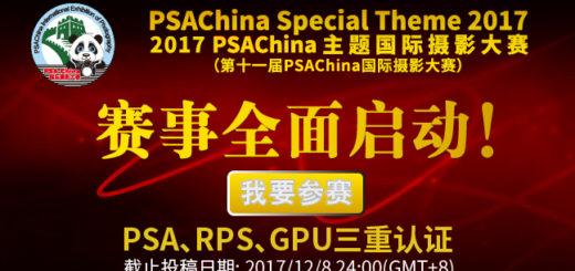 第十一屆 PSA China 主題國際攝影大賽