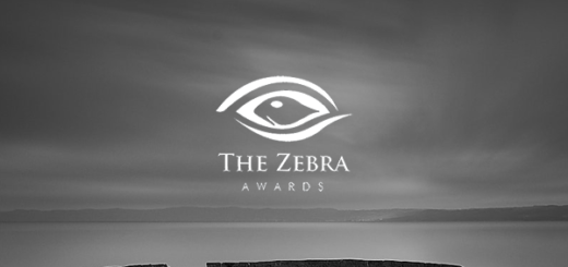The Zebra Awards