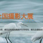 第二屆中國.都昌鄱陽湖候鳥全國攝影大展徵稿