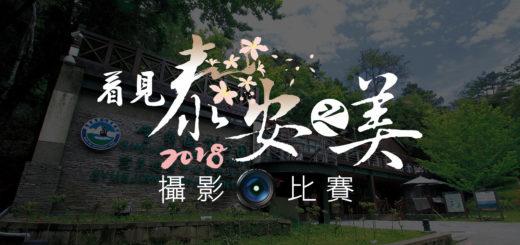 讓世界看見台灣美.2018看見「泰安之美」攝影比賽
