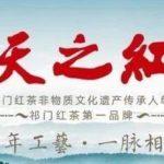 2019安徽省第六屆工業設計大賽「天之紅杯」專項賽