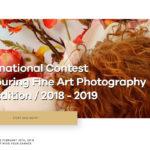 Fine Art Photography Award 第五屆 FAPA 藝術攝影獎