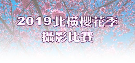 2019「北橫櫻花季」攝影比賽