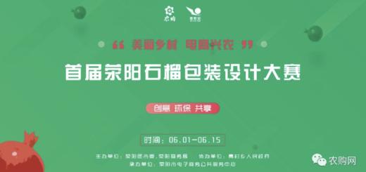 「美麗鄉村.電商興農」首屆滎陽河陰石榴包裝設計大賽