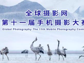 2019全球攝影網第十一屆手機攝影大賽