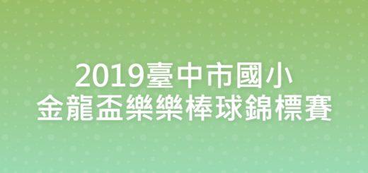 2019臺中市國小金龍盃樂樂棒球錦標賽