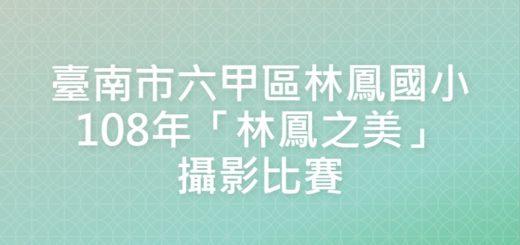 臺南市六甲區林鳳國小108年「林鳳之美」攝影比賽