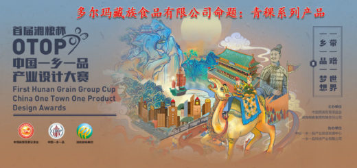2019首屆湘糧杯中國「一鄉一品」產業設計大賽