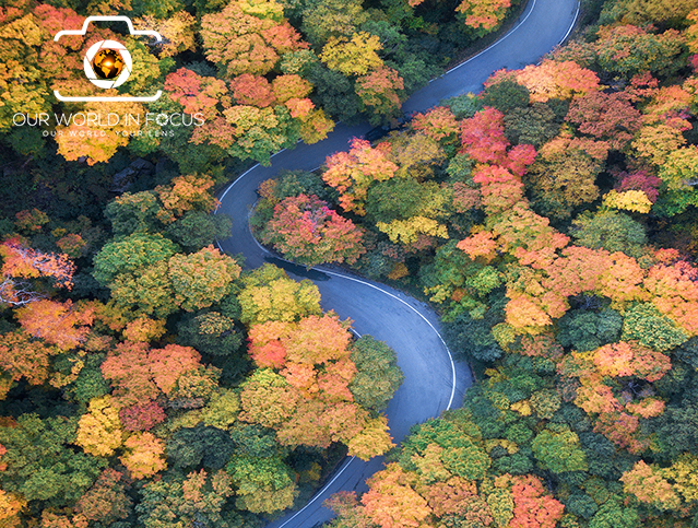 Fall Colors Photo Contest - Our World In Focus