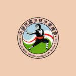 109年第十七屆中正盃洪拳國武術錦標賽