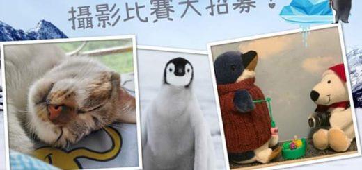 《南極企鵝北極熊》「動物救兵」創意攝影比賽