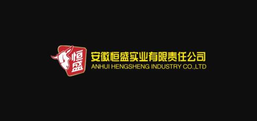安徽恆盛實業有限責任公司