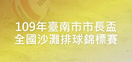 109年臺南市市長盃全國沙灘排球錦標賽