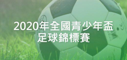 2020年全國青少年盃足球錦標賽
