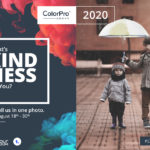 2020「KINDNESS」ViewSonic ColorPro Award