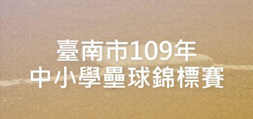 臺南市109年中小學壘球錦標賽