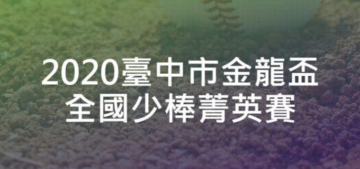 2020臺中市金龍盃全國少棒菁英賽