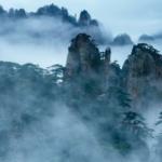 2020「春山可望」大黃山「生命共同體」全國攝影大展
