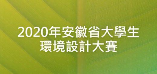 2020年安徽省大學生環境設計大賽