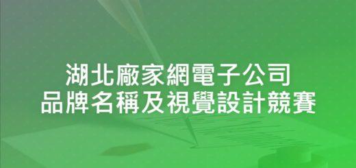 湖北廠家網電子公司品牌名稱及視覺設計競賽