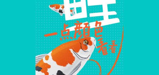 中南宸樾「你眼中的最美錦鯉」吉祥物設計競賽