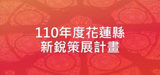 110年度花蓮縣新銳策展計畫