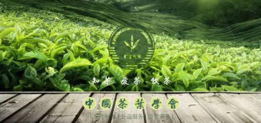 「中茶杯」我為中國茶代言微視頻大賽