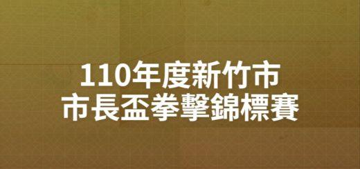 110年度新竹市市長盃拳擊錦標賽