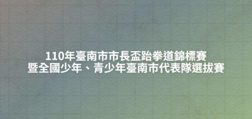 110年臺南市市長盃跆拳道錦標賽暨全國少年、青少年臺南市代表隊選拔賽