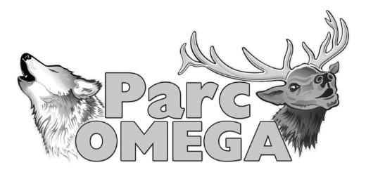 2021 Parc Omega Design Competition