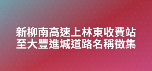 新柳南高速上林東收費站至大豐進城道路名稱徵集
