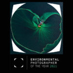 2021 Environmental Photographer of the Year