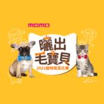2021 momo購物網「曬出毛小孩」寵物寫真比賽