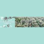 2021三屆「世界梨都.大美碭山」全國攝影大展